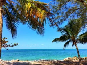 Dreamy beaches of Key West