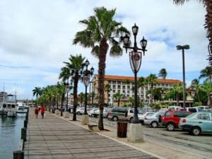 Palm lined promenade at the port of Oranjestad (Aruba)